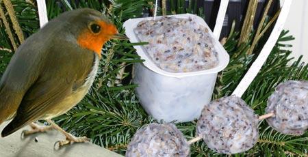 Brochettes de graines pour oiseaux wanimobuzz - Porte boule de graisse pour oiseaux ...