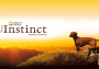 blog_true-instinct
