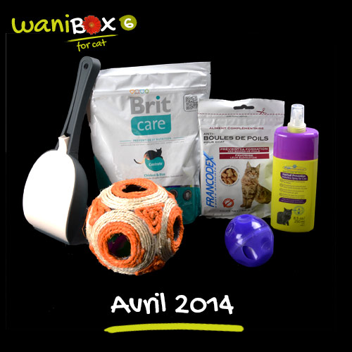 wanibox chat 6