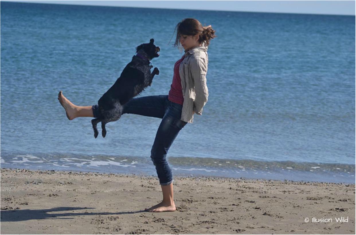 Brixi jump