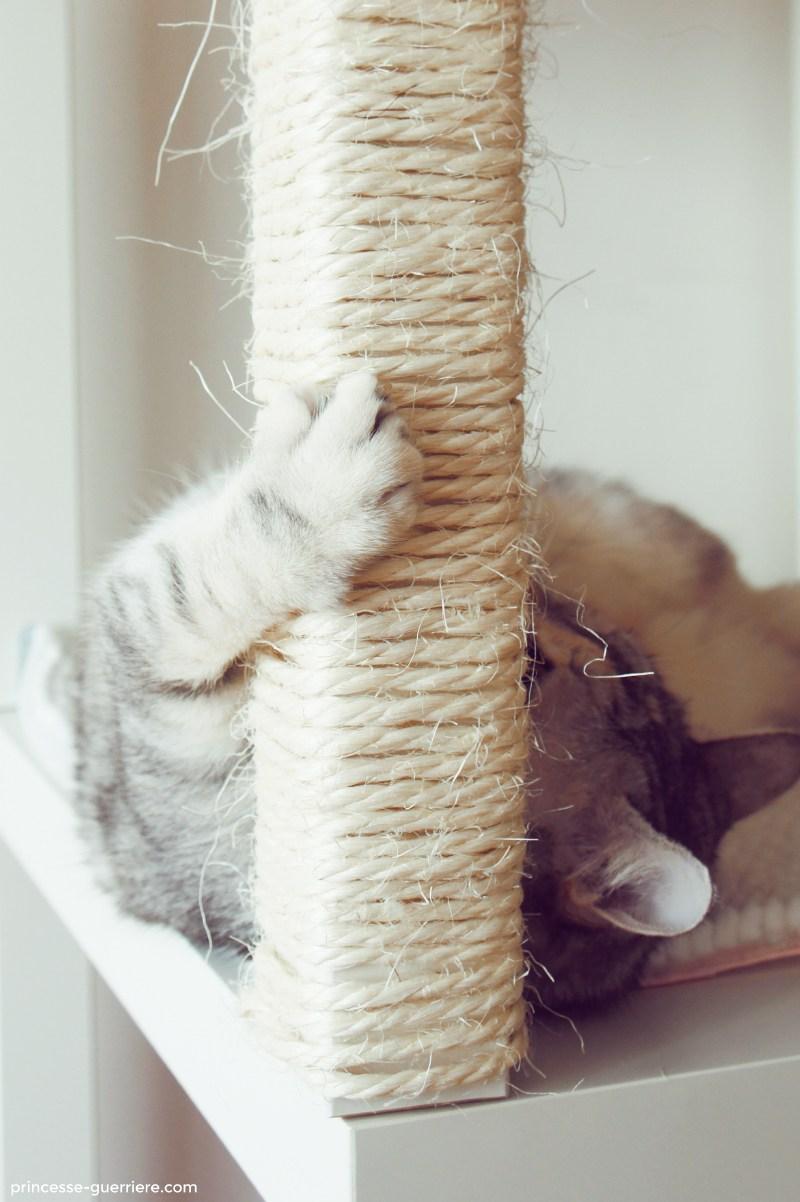 Arbre A Chat A Faire Maison comment fabriquer un arbre à chat ? diy ikea - wanimobuzz