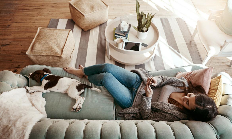 est ce que je peux adopter un chien en appartement. Black Bedroom Furniture Sets. Home Design Ideas